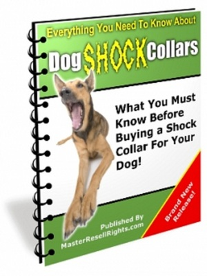 Product picture How to buy a Shock Collar For Your Pet Dog!